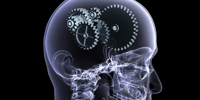 Psicología cognitiva aplicada a las políticas públicas